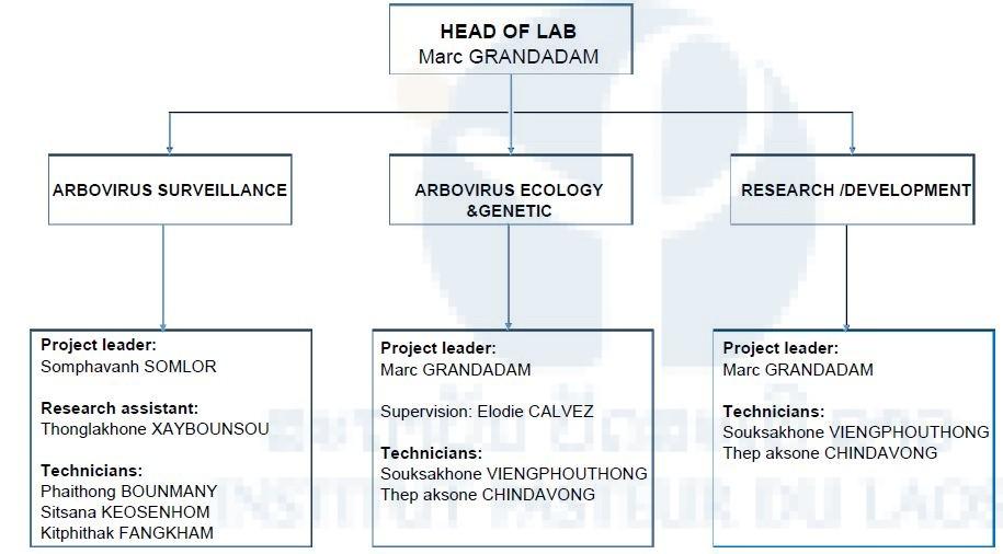 Lao – French lab 1 / Arbovirus & Emerging Viral Diseases