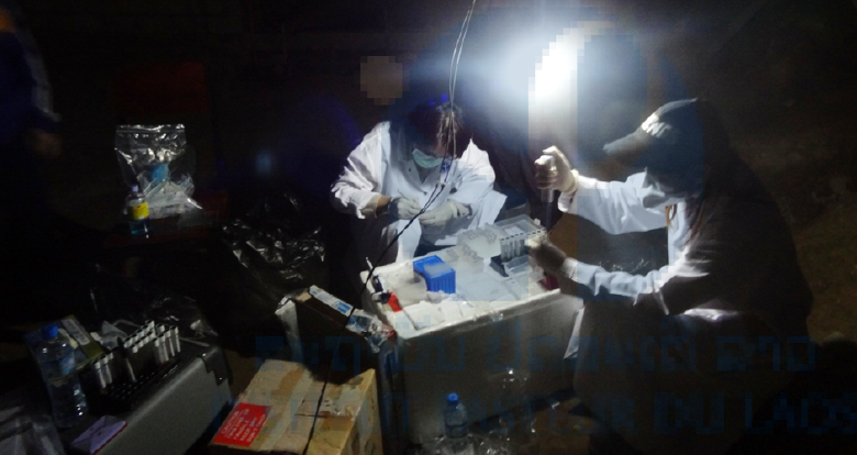 Photo: IPL staff collecting and organising samples from varicella outbreak.